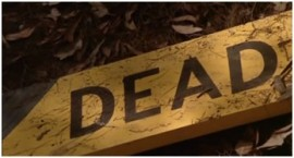 dead_wooden sign