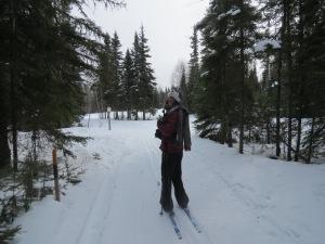 Country skiing in Elk Ridge - Prince Albert Park